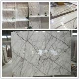 New Stunning White Calacatta Purple Exclusive Marble Slab for Wall/Floor Tiles