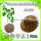 freash burdock root extract