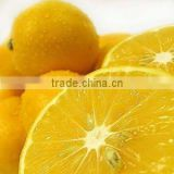 Lemon Extract Powder --Citric Acid 4%-99% by HPLC