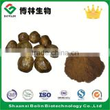 High Quality Bulk Propolis Powder with Factory Price