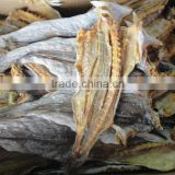 dried mackerel fish