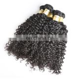 100% bundle weft Brazilian Remy Virgin human indian hair extensions