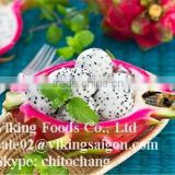 Frozen Dragon Fruit- High quality - Competitive Price