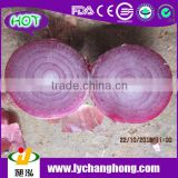 2014 Fresh Red Onion for India Market