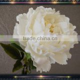 wholesale arrangements bouquet peony silk flower                                                                         Quality Choice                                                     Most Popular