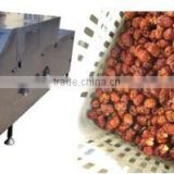 Red Dates Kernel Extractor Machine|Iraq Dates Seed Removing Machine|Red Dates Kernel Pitting Machine