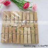 Bamboo clothes peg