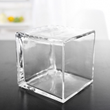 wholesale square potted plant glassware suppliers/ glass vase