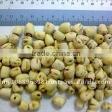 Dehulled Lotus Nut Whole
