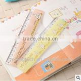 carton ruler for kids / 15/18/20/30/ cm plastic ruler