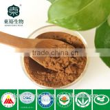 Best Quality and Competitive Price 100% Pure and Natural Organic green tea extract50%-98%