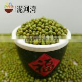 the price of green mung bean high quality 2016 crop