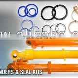 Excavator Hydraulic Arm Boom Bucket Cylinder and Seal Kit