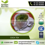 High Concentration of Vitamins Organic Quality Coca tea for Bulk Buyers