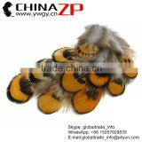 ZPDECOR Wholesale Top Selling Dyed Golden Yellow Loose 6-8cm Size Reeves Venery Pheasant Feathers Plumage