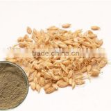 Malt peyocactine extract brewing,beer malt extract powder