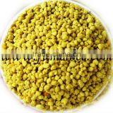 High quality yellow pure rape bee flower pollen producer