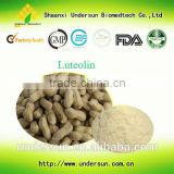 Factory price Luteolin/Peanut shell extract/luteolin 98% /peanut shell extract powder/peanut shell powder