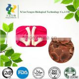 High quality wholesale nutrition deer antler velvet extract 10:1