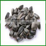 Sale Chinese High Quality and Cheap Sunflower Seeds In Bulk for Pet Food