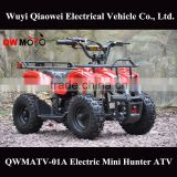 QWMOTO 500W 800W 1000W Mini buggy Kids electric quad bike mini moto ATV Quad