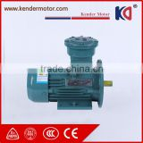 Cast Iron Electric Explosion Proof AC Motor with Customized Voltage