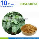 100% Pure Natural Kava Extract Powder