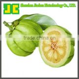 Sell Garcinia Cambogia Extract Powder as weight loss supplement, 40%~60% Hydroxycitric Acid HCA