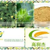 Herbal Supplements Type and Capsules Dosage Form tribulus terrestris extract