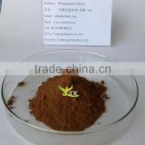 Factory High quality Pomegranate bark extract powder