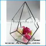 Wholesale clear glass hanging reptile terrarium geometric