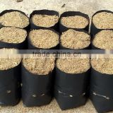 customized plastic potting bags for plants or green household                                                                         Quality Choice