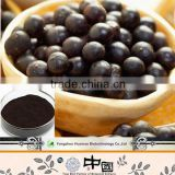 cheap price for botanical extract anthocyanidins acai powder 4:1