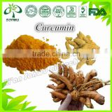 Natural Bulk curcumin powder