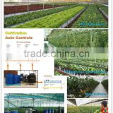 Nursery, hydroponics, NFT, hydroponic fodder and aeroponics for greenhouse production