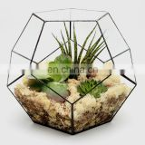 terrarium geometric glass terrarium wholesale plant vase