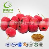 GMP Certificate Hawthorn berry crategolic acid