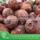 Competitive Price Well taste Taro Flavor Powder with top quality