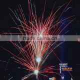 professional fireworks on sale - China quality professional fireworks