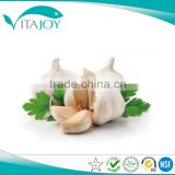 Plant Extract Garlic extract, Garlic alliin 2%,3%,5%,6%,8%,10%,20% in US stock with Fast Delivery
