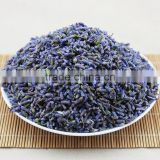 2015 Harvest Dried Lavender Flower,Dried Lavender Tea,China Herb Tea