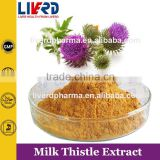 GMP Factory Supply Milk Thistle Extract Silymarin for Reducing Blood Fat
