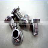 Custom made stainless steel hollow bolt with good quality                                                                         Quality Choice