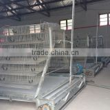 poultry farm equipments chicken cages manure conveyor belts