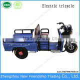 3 Wheel Horizontal Tricycle with Closed Container Cargo Box