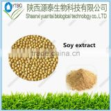 high quality 100% natural Soy bean extract /Soy isoflavone extract powder /Soy lecithin extract