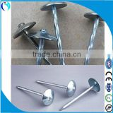 dubai and arabic market roofing nail roofing nails with umbrella head(factory)/roofing nails / umbrella nail