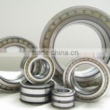 SL045012PP Double-Row Full Complement Cylindrical Roller Bearing SL045012 PP ,SL 04 5012 PPNR