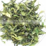 Darjeeling Moonlight Bai Mu Dan White Tea - 2015 Hot Product