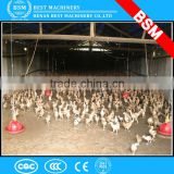 broiler chicken poultry feeding system / Poultry layers/broilers automatic feeding system